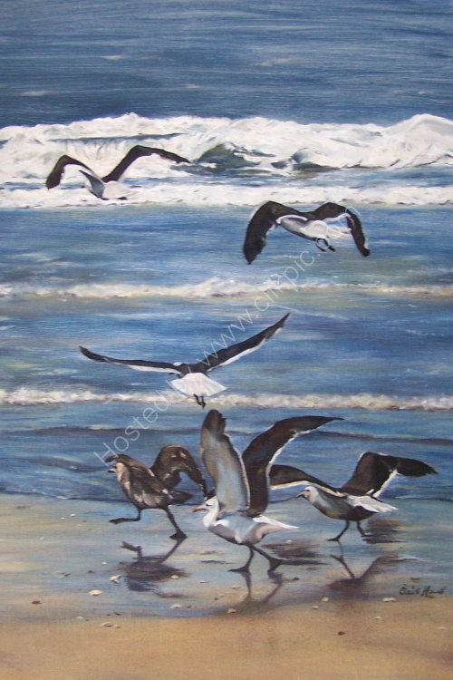 Freedom in Oils