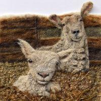 Lamb in sheeps clothing