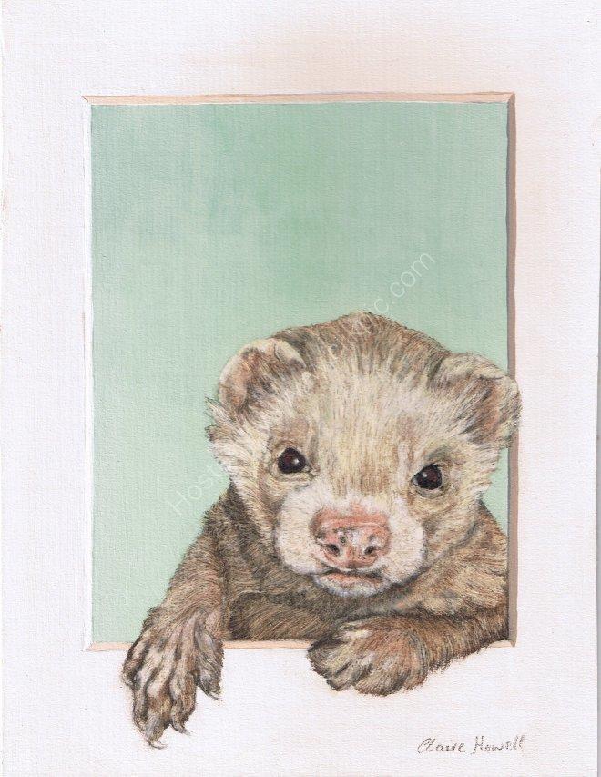 Basil the Ferret