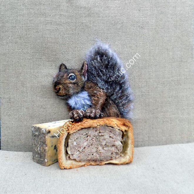 Melton squirrel