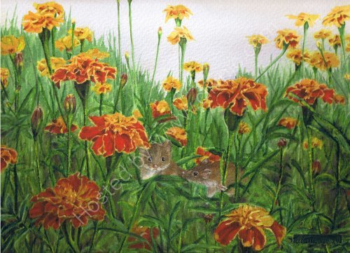 Mice in the Marigolds