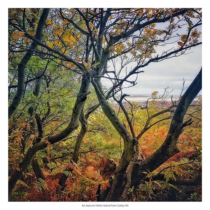 An Autumn Hilbre Island from Caldy Hill, Wirral