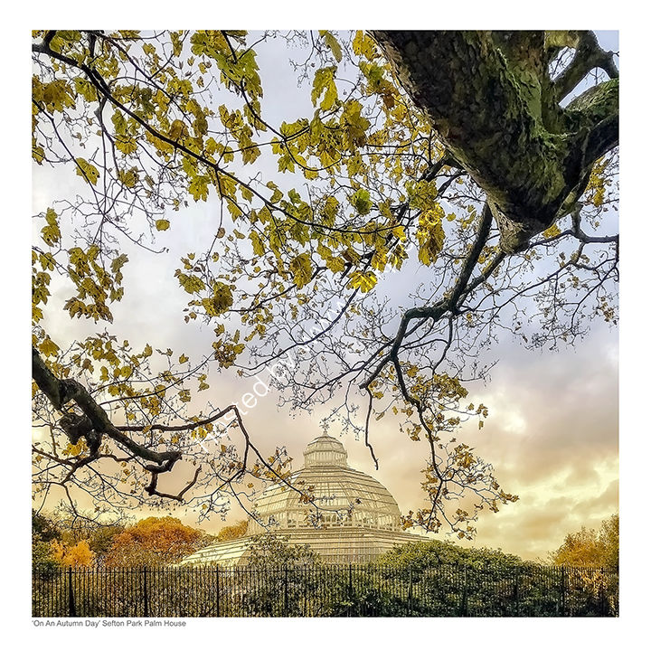 On An Autumn Day - Sefton Park Palm House, Liverpool