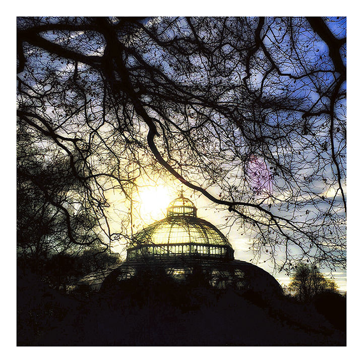 Sefton Park Palm House - Liverpool