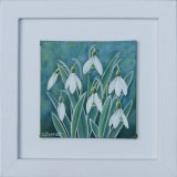 Snowdrop Mini 3 framed