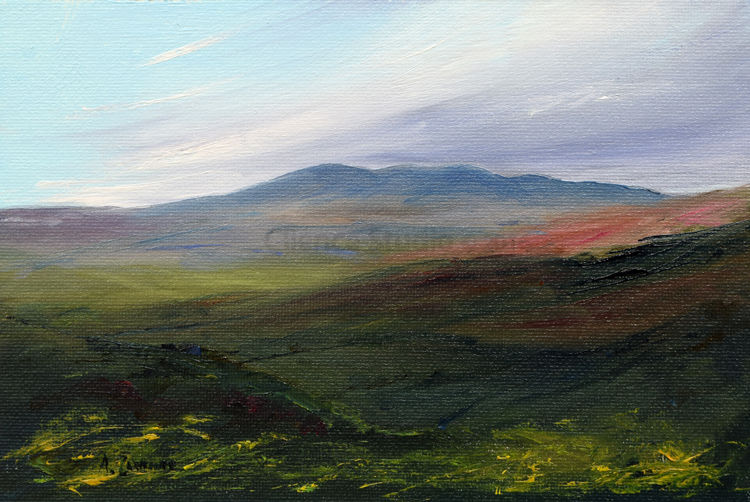 The Heathery hills of Galloway (Cairnsmore of Fleet)