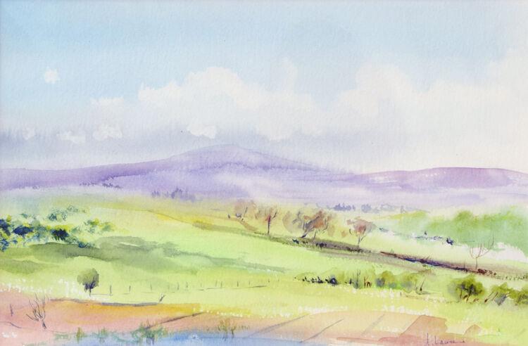 Galloway Fields above Kirkcudbright