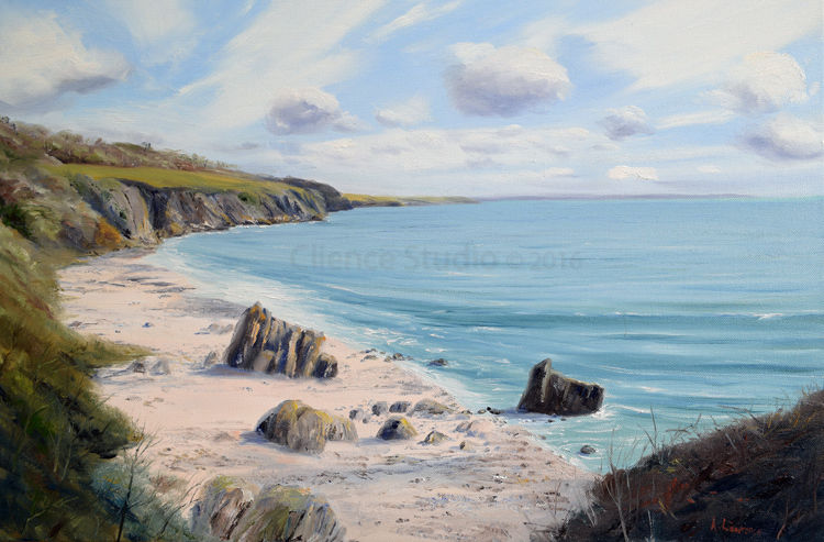 Rugged Coast Ravenshall Point