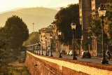 Florence 12
