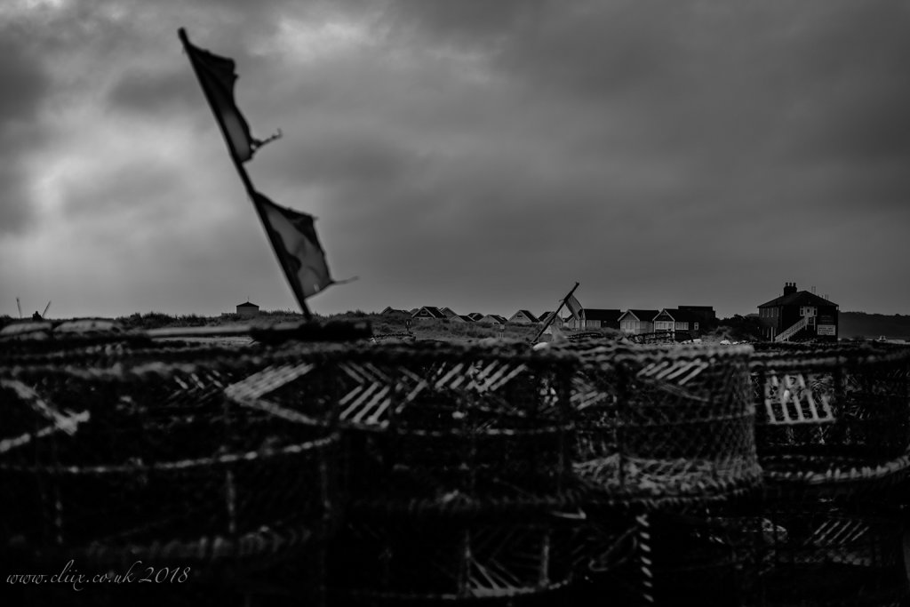 Windy Black & White