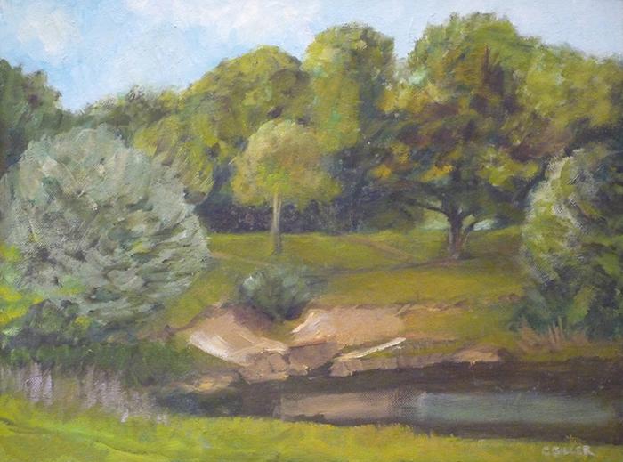 121-H Heath pond 1.jpg