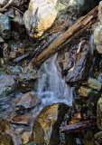 Water Wood and Stone 1