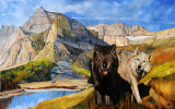"Wolves in Montana (painting) Oil on board 18"" Hx 28"" W) (private collection: Scotland)"