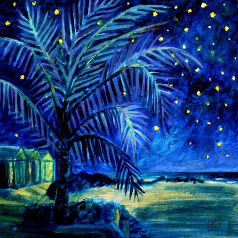 Starry Night, Monkey Mia