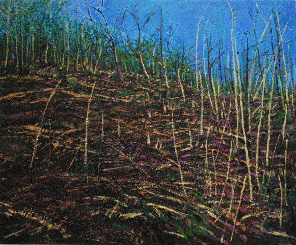 Scrubland, oil on canvas 72 x 86cms