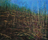Scrubland, oil on canvas 72 x 86cms
