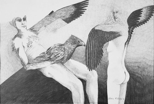 """""""Free to fly I"""", penicil on paper, 15 x 22inches, 1978"""