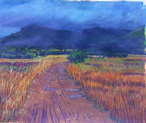 """Summer Bog 1, Sligo"", Acrylic on paper, 20 x24inches, 1998"