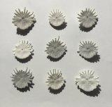 Mermaids Coins (to buy back the ocean)
