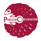 Pangolins X 2