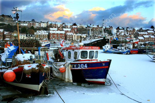 Frozen in Whitby Harbour
