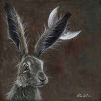 Crescent Moon Hare