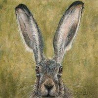 Hare #I
