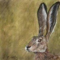 Hare # II