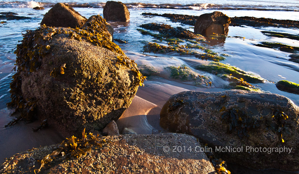 Winter Sun Setting on Rocks at Filey