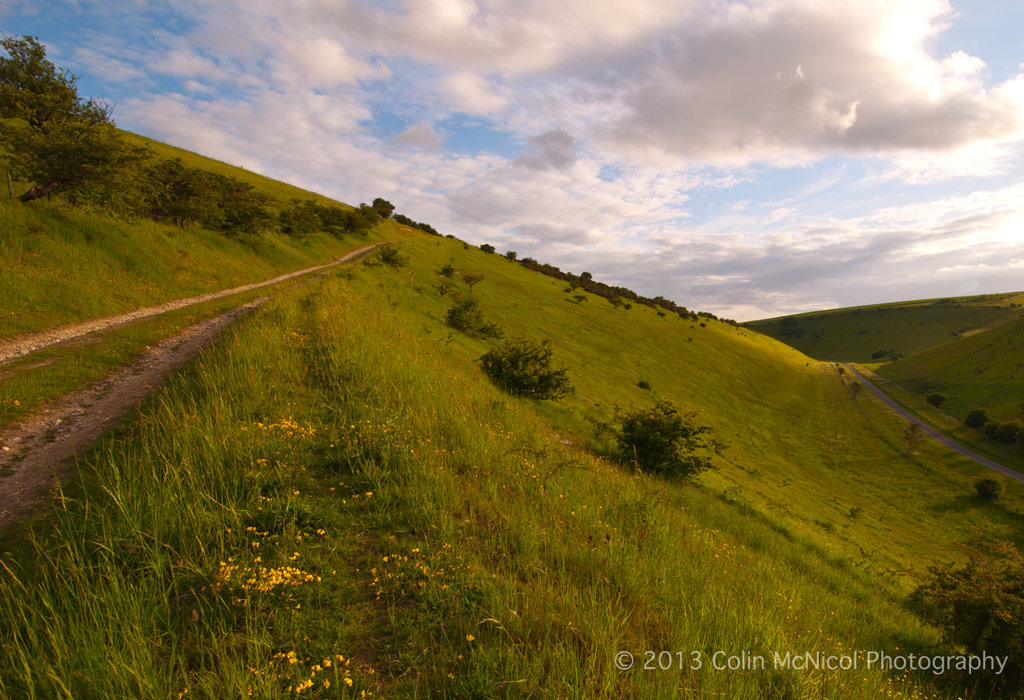 The Minster Way, Millington Pastures