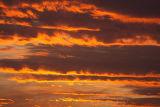 A gloden sky