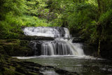 A waterfall in the Clare Glens