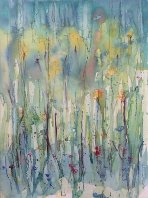 Cotehele Wildflowers I