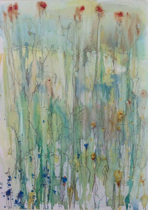 Cotehele Wildflowers II