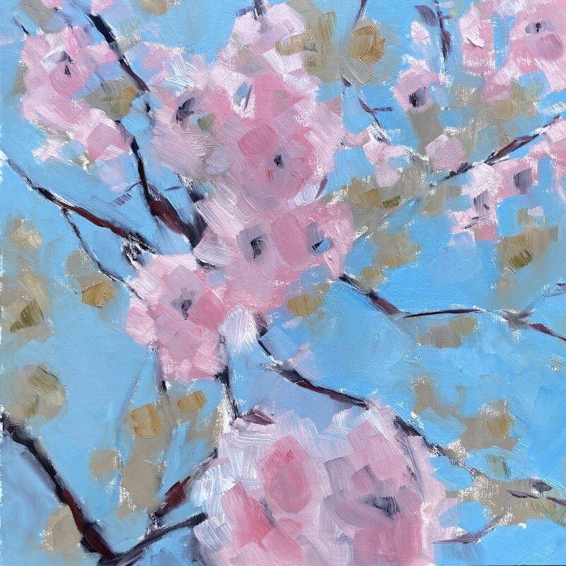 Up through Prunus Pink to Blue
