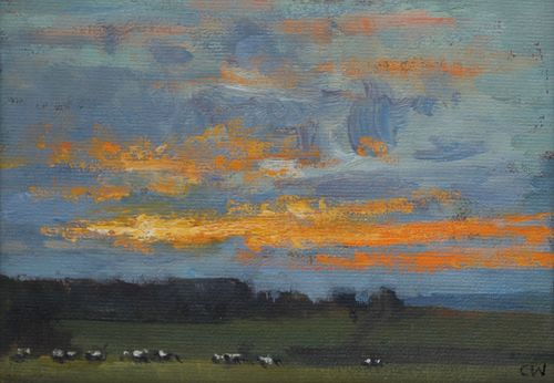 'Cows at Sunset, Poundbury Hillfort'  SOLD