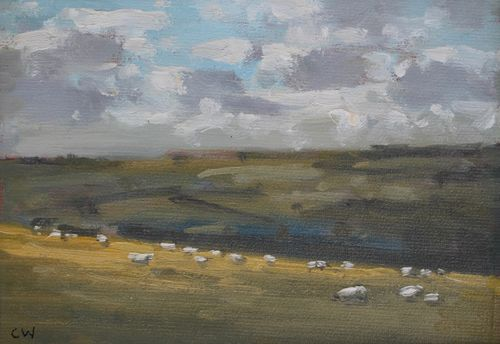 'Sheep grazing near Litton Cheney' Oil on Paper 11x16cm