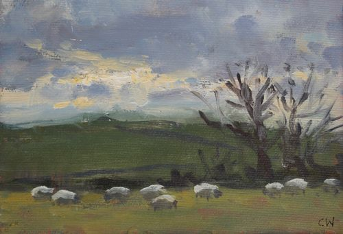 'Sheep grazing in winter' Oil on Paper 11x16cm SOLD