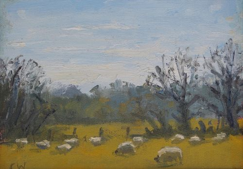 """Sheep grazing near Stinsford' Oil on Paper 11x16cm"