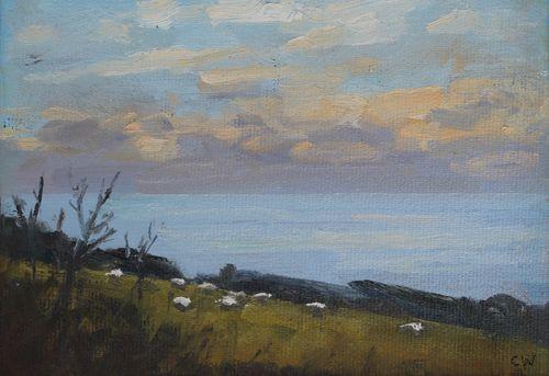 'Sheep grazing under an evening sky'  SOLD