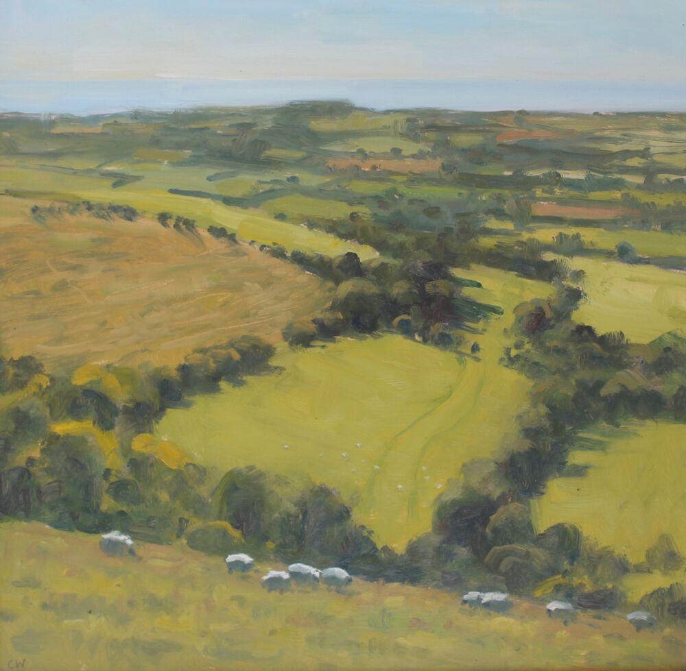 'Sheep on Eggardon'   Oil   40x40cm