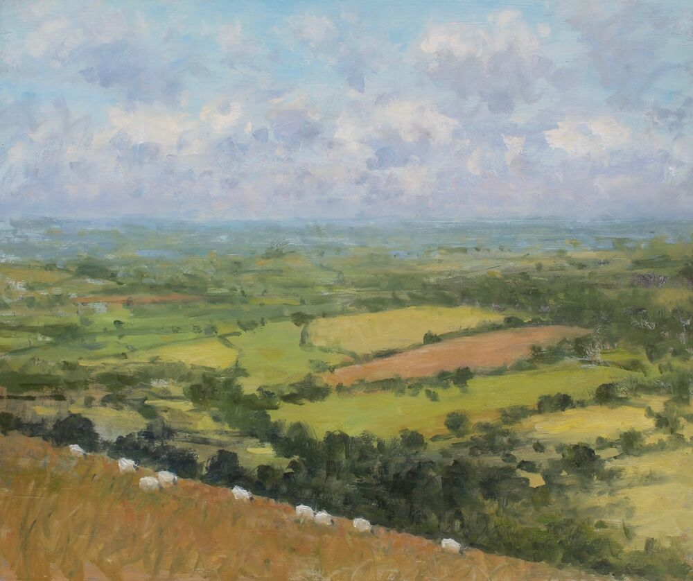 ''View across the fields, Eggardon'    Oil    50x60cm