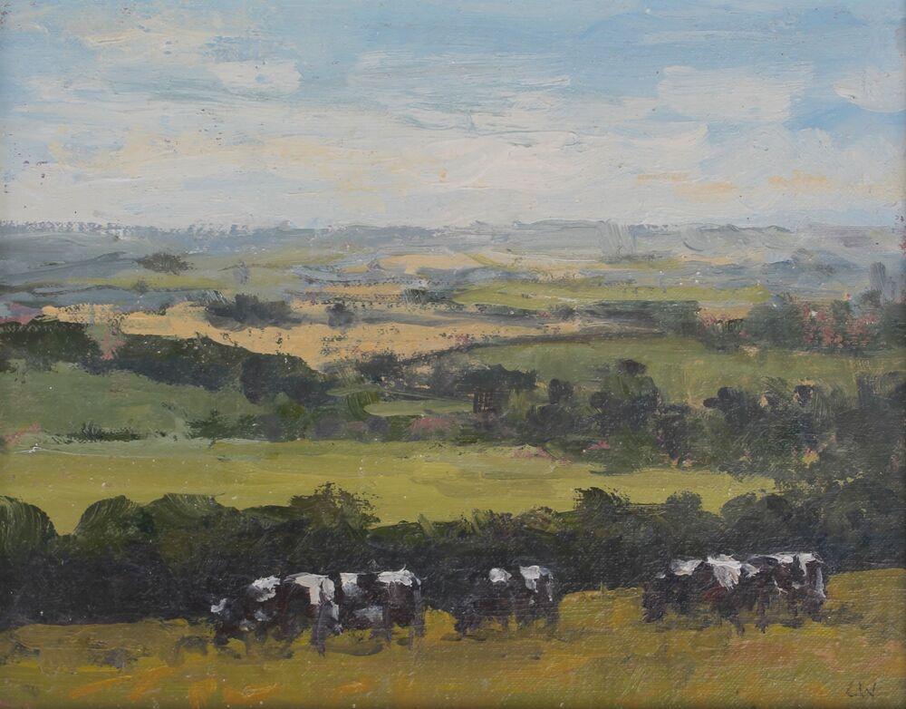 'Cows on Poudbury Hillfort'.  Oil   20x25cm