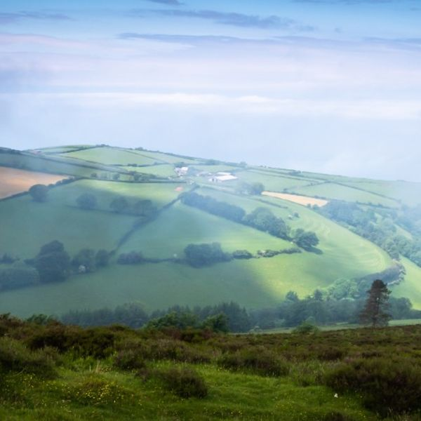 Devon Misty Landscape