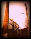 Street Light Colour