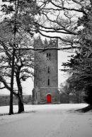 Carton Tower