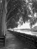 Chinon Walk