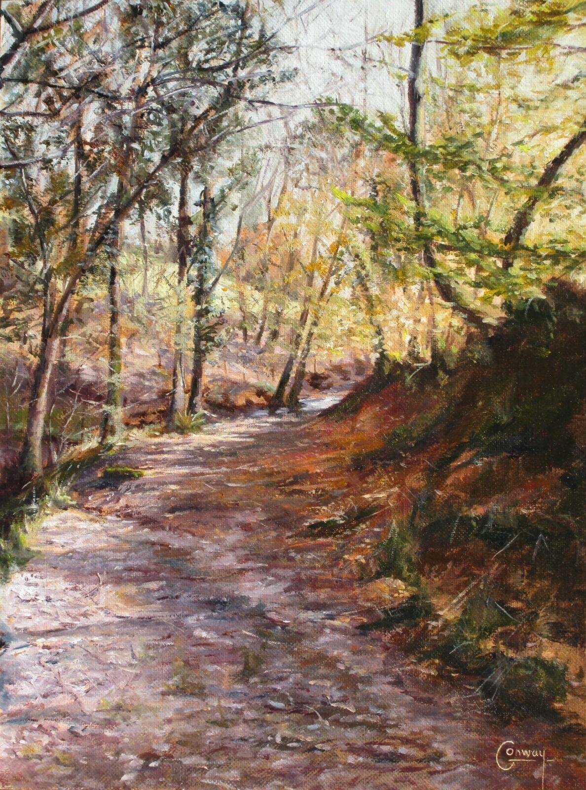 'Glimpse of the Ford Ahead' - Llansawel, Carmarthenshire