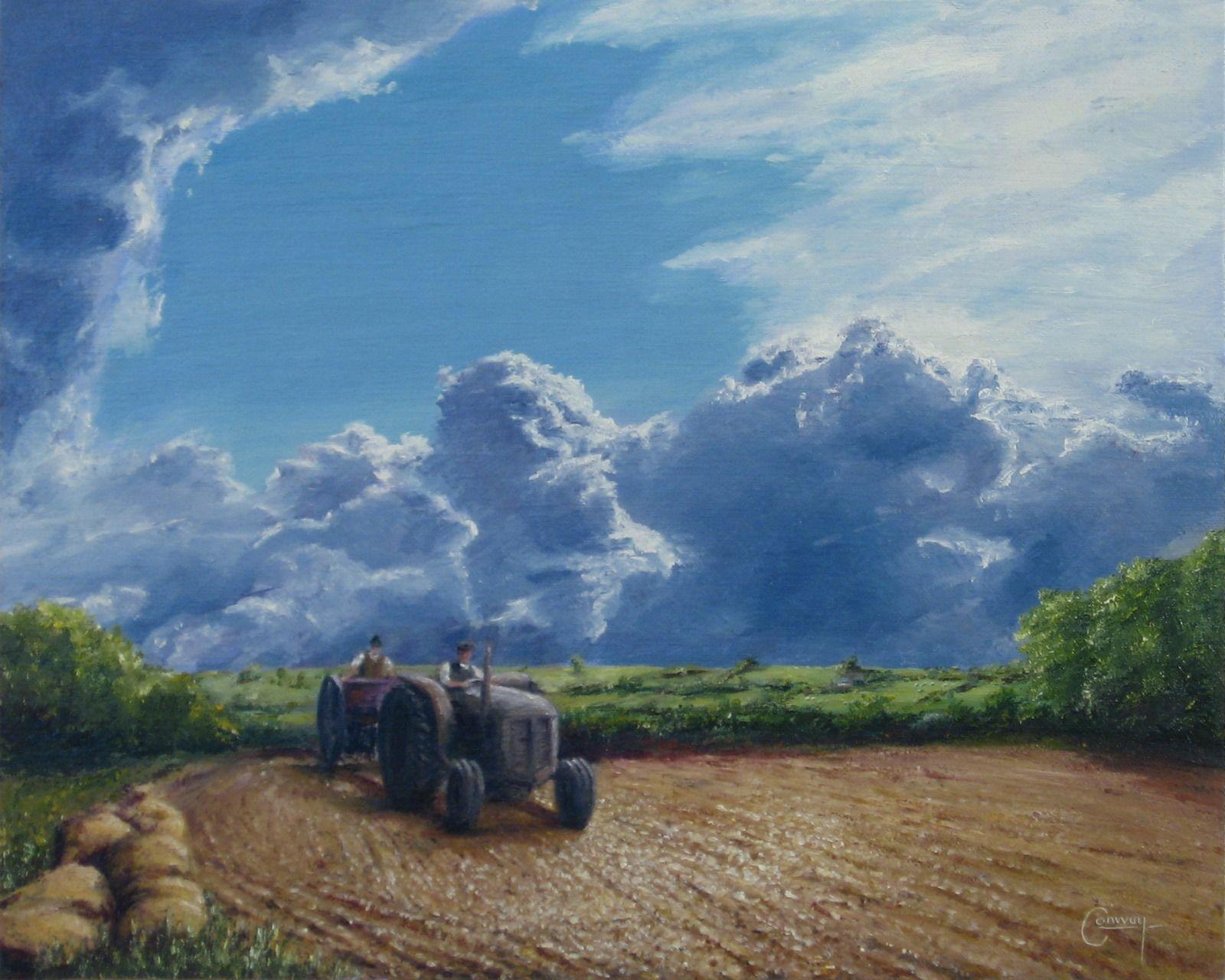 Drilling corn with Ferguson TE20 tractor, near Llandeilo Carmarthenshire