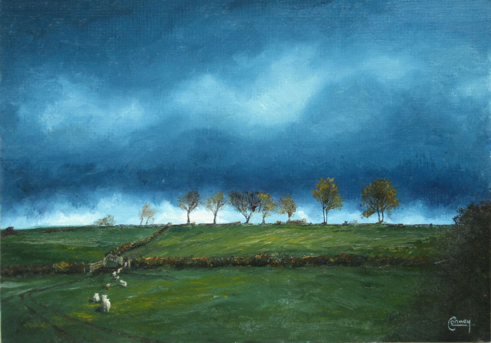 'Sky and Sheep Looking North' - Llansawel, Carmarthenshire